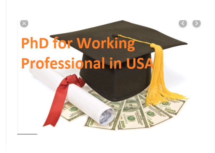 PhD for Working Professionals in USA
