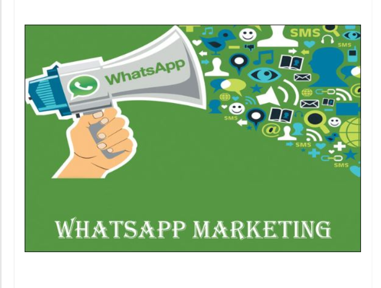whatsapp marketing group
