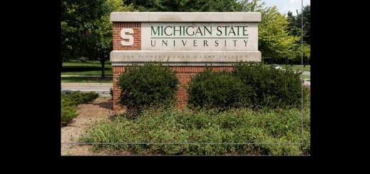 Michigan State University Scholarships