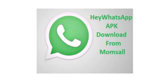 Download HeyWhatsApp